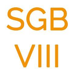 Bundesrat nimmt SGB VIII Reform von der Tagesordnung